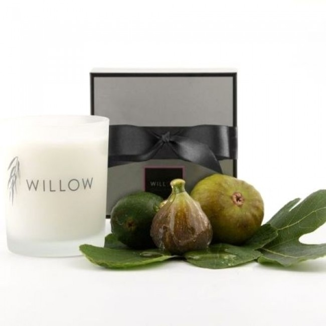 Classic Candle in Fig & Wild Honey