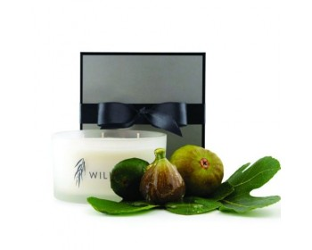 Luxury 3 Wick Candle in Fig & Wild Honey